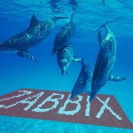 Optimizing MySQL for Zabbix