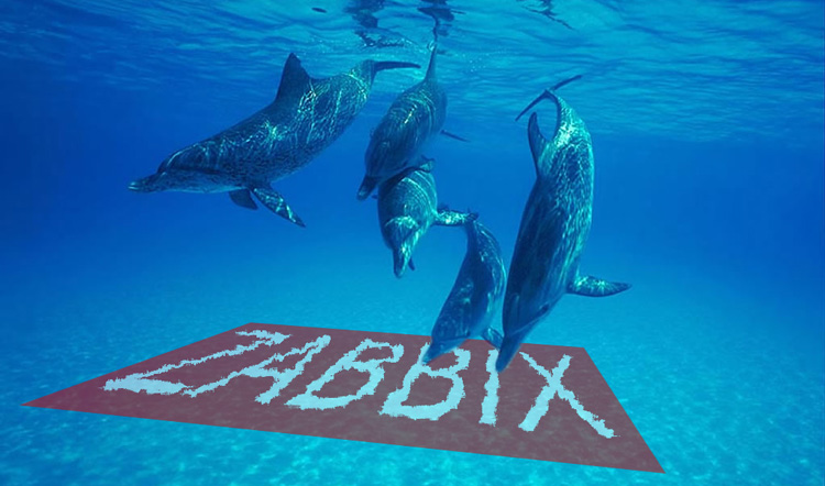 dolphins making friends with zabbix