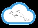 MySQL in the Cloud