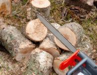 Purging Bin Logs