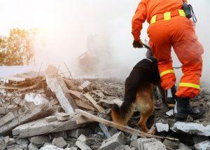 MySQL High Availability and Disaster Recovery Webinar