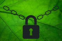 Encryption for MongoDB