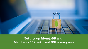 MongoDB Member with x509 auth