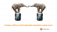 HAProxy PostgreSQL pgsql-check