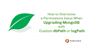 mongodb permissions issue
