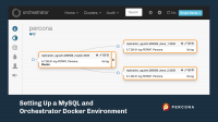 MySQL and Orchestrator