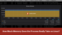 Memory Process takes on Linux