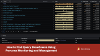 Query Slowdowns Using Percona Monitoring and Management