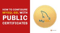 How to Configure MySQL SSL With Public Certificates