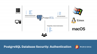 PostgreSQL Database Security: Authentication