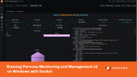 PMM Windows Docker