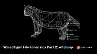 wiredtiger file forensics wt dump