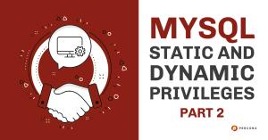 MySQL Dynamic and Static Privileges