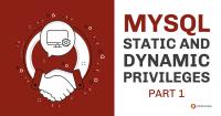 MySQL Static and Dynamic Privileges