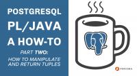 PostgreSQL PL:Java Manipulate Return Tuples