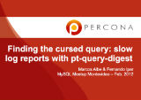 Finding the cursed query: slow log reports with pt-query-digest